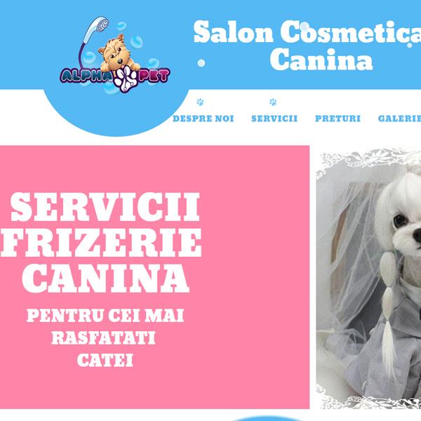 servicii web design salon alphapet