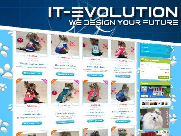 servicii web design profesional